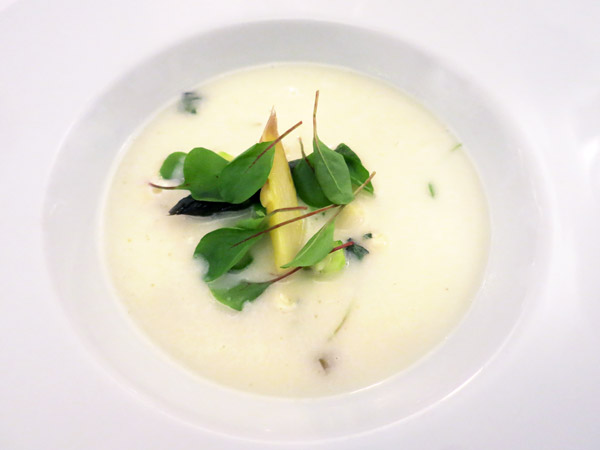 White asparagus soup with tiny cheese dumplings and tart rhubarb at Alabárdos in Budapest