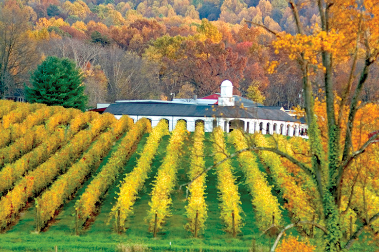 The Undiscovered  Wine Country of Virginia