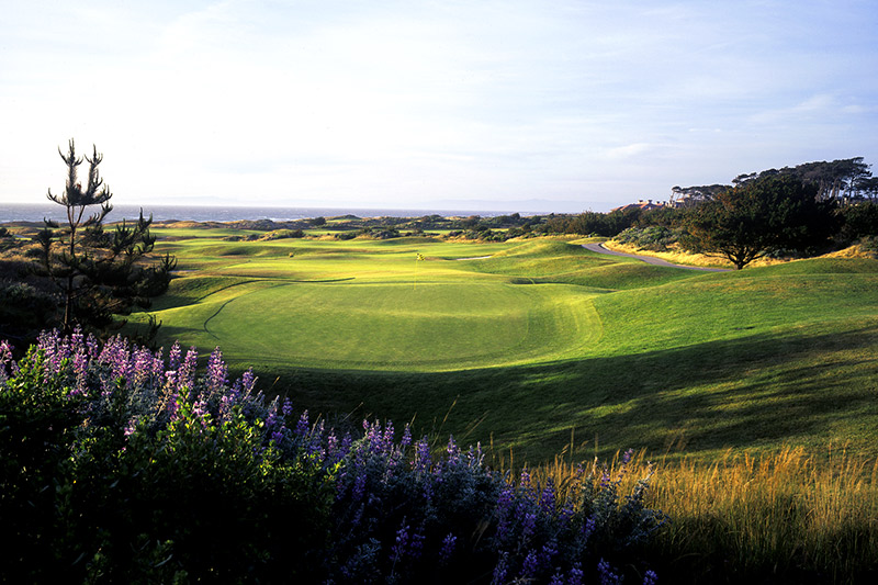 The Links at Spanish Bay - © Joann Dost