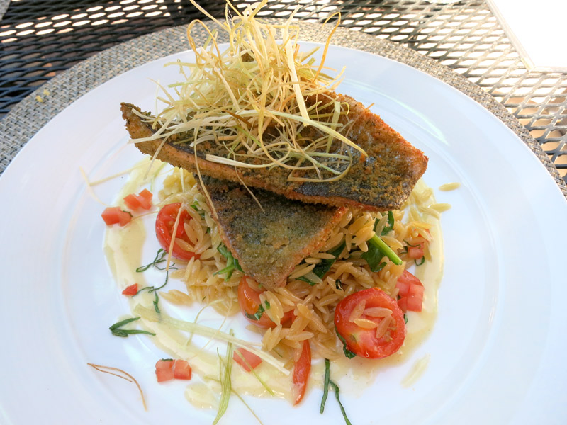 Trout with a crunchy mustard crust, al dente orozo with basil and roasted tomatoes at Hotel Jerome's Prospect restaurant