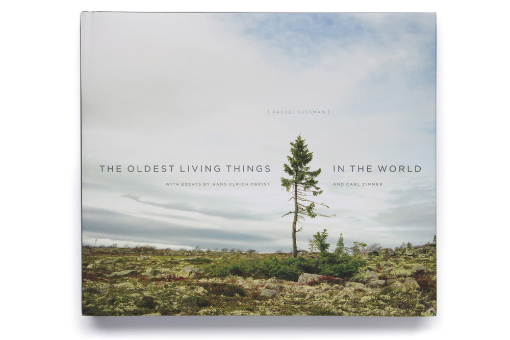 """""""The Oldest Living Things in the World"""" by Rachel Sussman"""