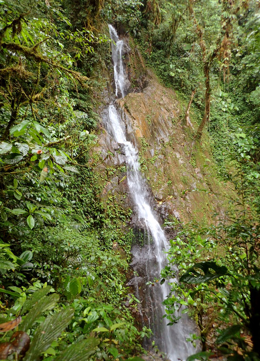 Copal waterfall near Mashpi Lodge - Photo by Hideaway Report editor