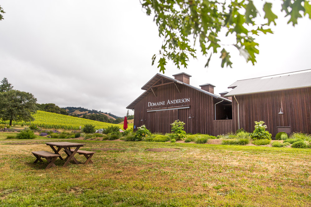 View of the large tasting room and vineyards at Domaine Anderson
