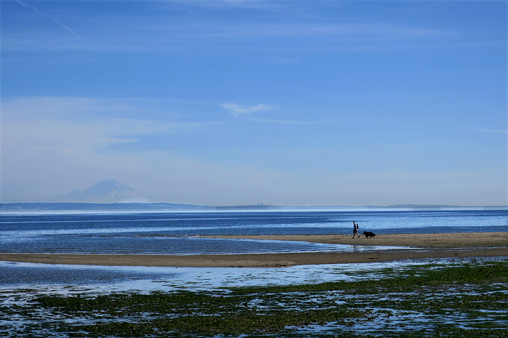 Mount Rainier barely visible from Double Bluff County Park in Freeland, Washington