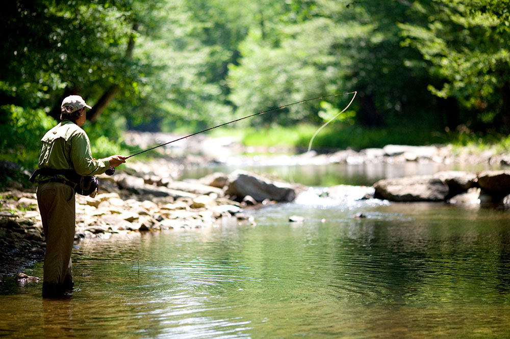 Fly-fishing at Hesse Creek near Blackberry Farm in Walland, Tennessee