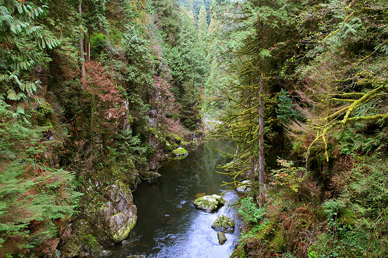 The Capilano River cuts a gorge through the woods just outside downtown Vancouver. - Photo by Hideaway Report editor