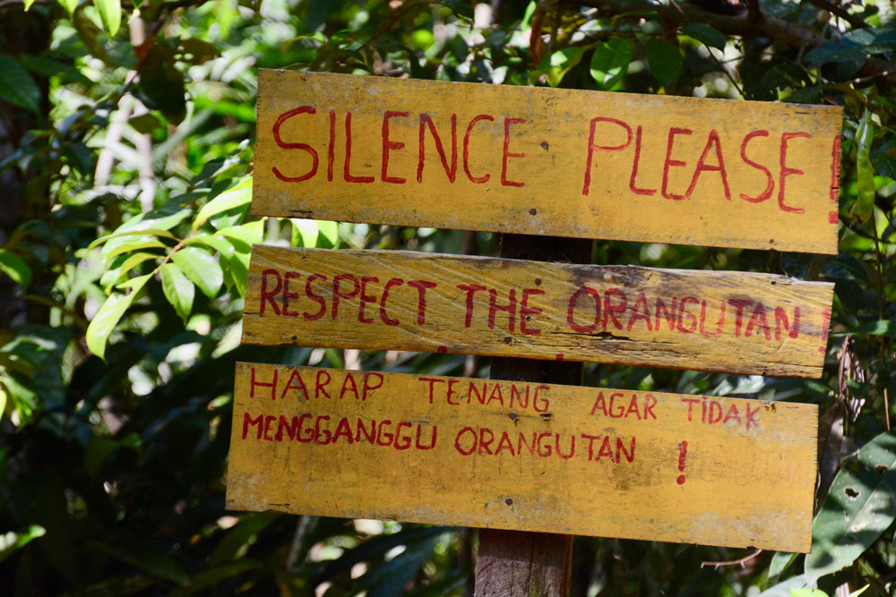 A sign welcoming us to the orangutan feeding area
