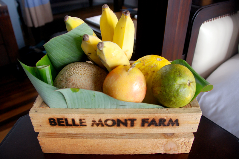 Crate of fresh fruit in our cottage at Belle Mont Farm