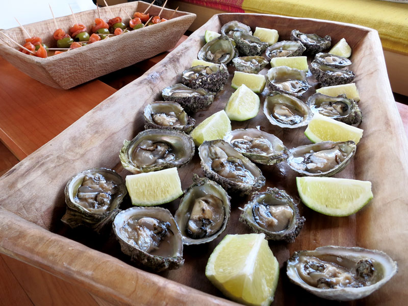 Our lunch of local oysters aboard the Williche   - Photo by Hideaway Report editor
