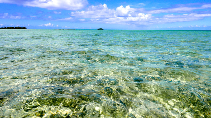 The translucent flats near Kamalame Cay are perfect for bonefishing - Photo by Hideaway Report editor