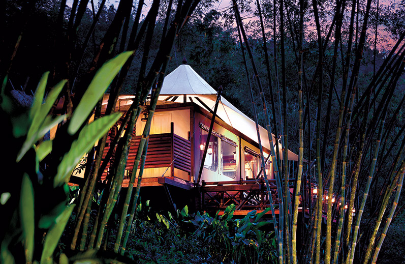 Readers' Choice 2015: Top 20 Safari Lodges and Camps