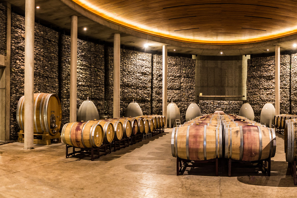 Wine barrels aging in the Matetic cellar