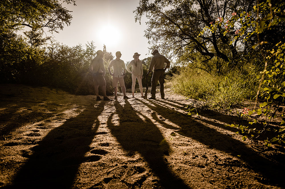 A safari sunset at Singita Boulders Lodge
