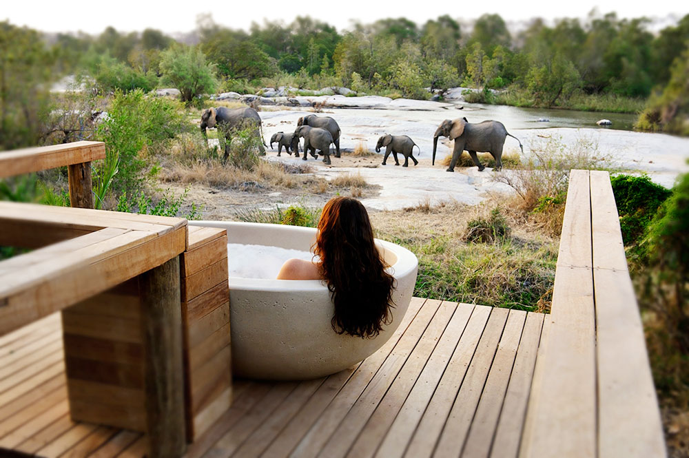 View from the Granite Suite soaking tub at Londolozi Private Game Reserve