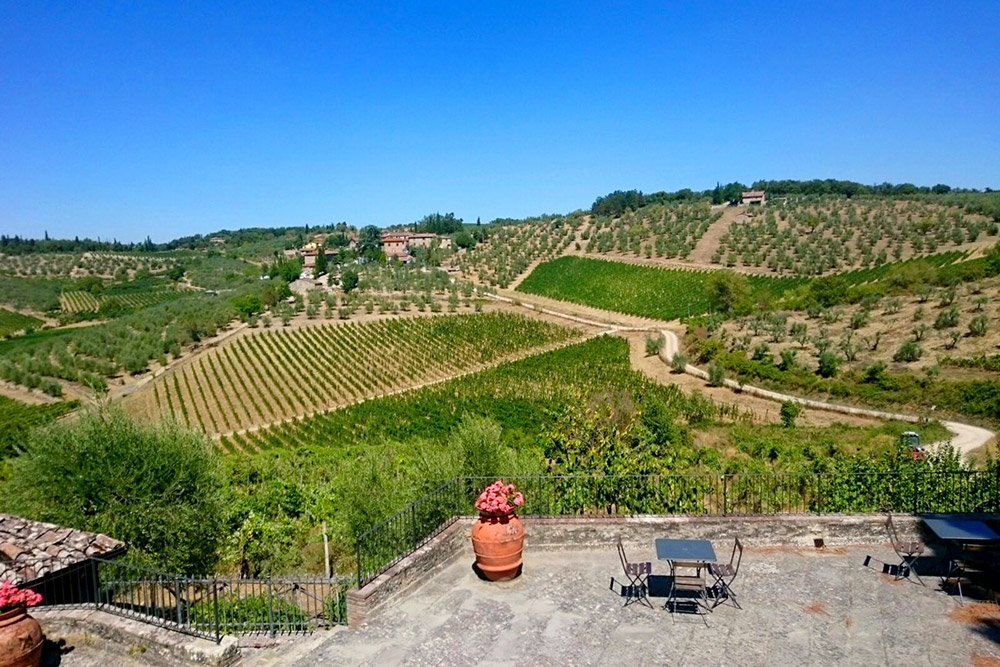 View from the terrace at Castello di Ama