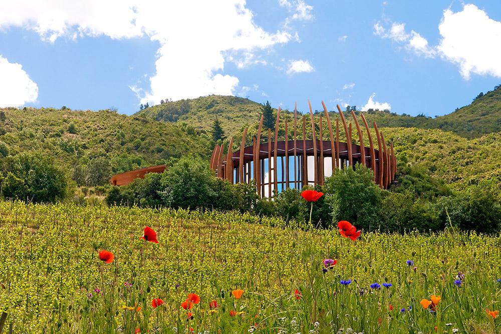Clos Apalta Winery at Lapostolle