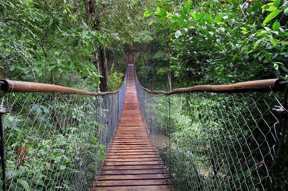 A hanging bridge at Nekupe