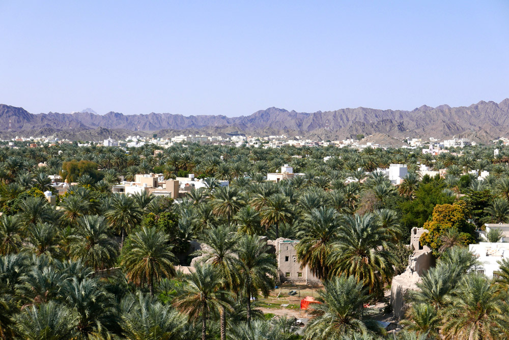 View of Nizwa, Oman