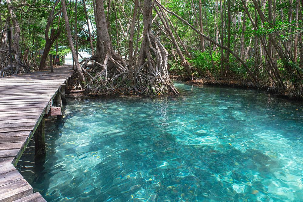 Celestun Biosphere Reserve on Mexico's Yucatán coast