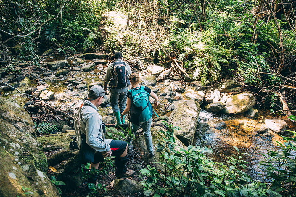Trekking for chimpanzees in Tanzania's Mahale Mountains National Park
