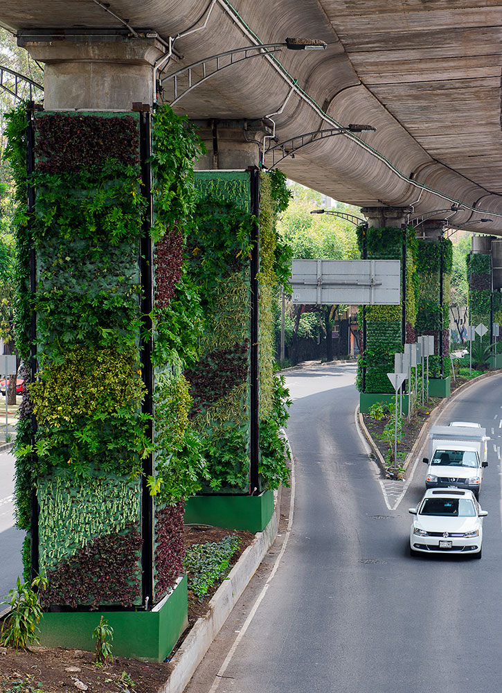 Via Verde in Mexico City, Mexico - VIAVERDE 2019